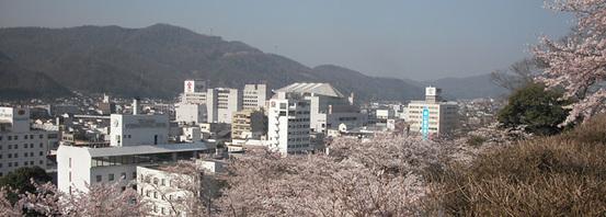 Tuyamashi1