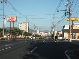 Photo_53